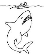 ぬりえ 鮫