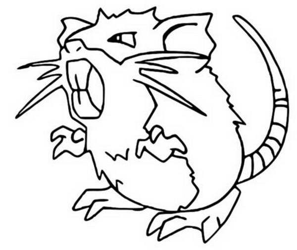 Malvorlagen Pokemon Rattikarl Zeichnungen Pokemon